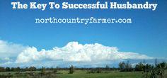 Key To Successful Husbandry