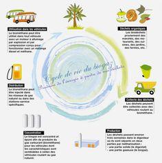 Le cycle de vie du biogaz