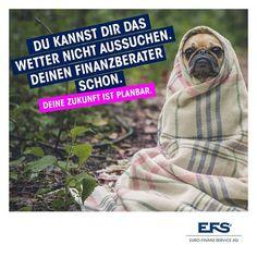 """""""Das Wetter ist unberechenbar - deine Finanzen nicht."""" Deine Zukunft ist planbar.  Wer braucht heute eine Decke? . . #Mondsee… Business, Dogs, Animals, Future, Finance, Weather, Animales, Animaux, Pet Dogs"""