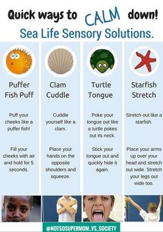 Superstars Which Are Helping Individuals Overseas Quick Ways To Calm Down Sea Life Sensory Solutions Includes A Free Printable At Your Kids Ot Social Emotional Learning, Social Skills, Social Issues, Social Anxiety, Behaviour Management, Classroom Management, Stress Management, Anger Management Activities For Kids, Communication Avec Les Parents