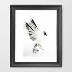 Kellas Campbell Proud Bird  https://society6.com/product/bird-knm_framed-print#12=60&13=54