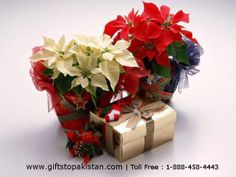 Send Online Flowers to Pakistan From USA, UK, Canada With Free Delivery.