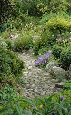 Stone pathway...love this! Almost a reflexology path.