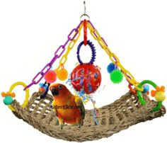 Sisal hanging playgym with bird toys - wow looks super fun!