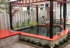 Gartenteich wasserpflanzen seerosen garten t r ume for Wasserpflanzen ikea