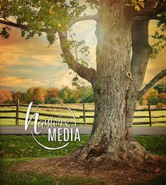 Beautiful Outdoor Fall Nature Tree and Fence Digital Backdrop