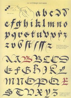 batarde calligraphy - Google Search