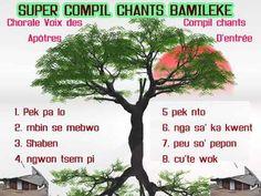 super compil Bamiléké (compil chants d'entrée) - YouTube Chant, Entrees, Youtube, Languages, Nun, Lobbies, Appetizers, Youtubers, Main Course Dishes
