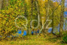 Qdiz Stock Images Colorful Trees by Lake with Wooden Pier,  #autumn #background #beautiful #beauty #branch #bright #colorful #fall #foliage #lake #landscape #leaf #leaves #light #nature #outdoor #park #peaceful #pier #pond #reflection #River #scenery #scenic #season #tranquil #tree #view #water #wooden #yellow
