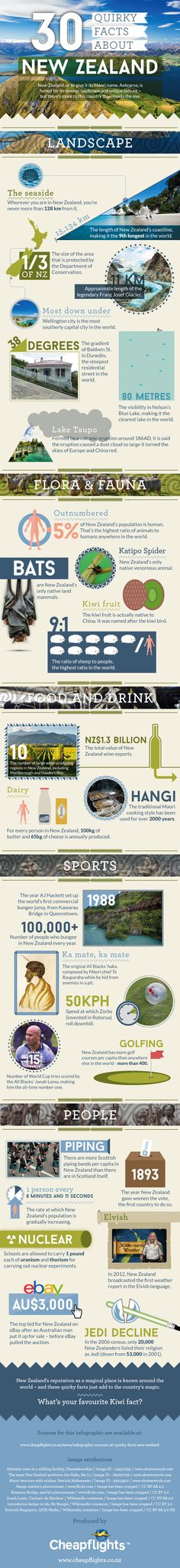 30 Interesting Facts About New Zealand - Travel Infographic. Topic: Kiwis, New Zealander, Maori culture, statistics, geography.
