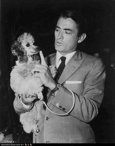 Gregory Peck with his toy poodle.  Love that Atticus had a toy poodle!