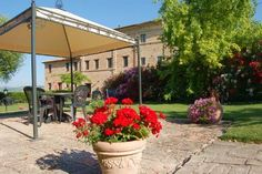 Luxury real estates -  Touristic Businesses and Hotels MARCHE Macerata Mogliano ppvp000024