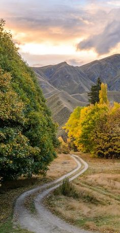 Macetown, Central Otago,South Island, New Zealand