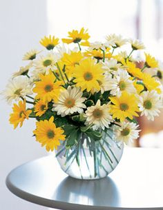 I like roses and all but daisies are my all time favorite flowers!!!