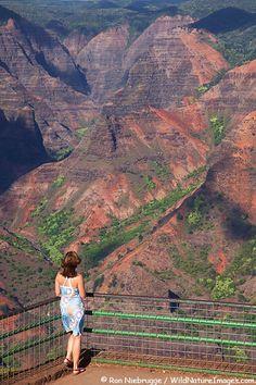 Visitor at  Waimea Canyon, also called the Grand Canyon of the Pacific, Kauai, Hawaii