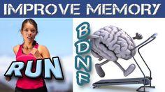 L'attività fisica stimola il cervello a secernere l'ormone cerebrale BDNF il quale aumenta il numero di interconnessioni sinaptiche tra i neuroni; In poche parole i neuroni del cervello aumentano il numero di collegamenti tra loro rafforzando la memoria, l'intelligenza e rallentando il progressivo decadimento delle facoltà mentali prevenendo la Demenza Senile, l'Alzheimer, il Parkinson, l'ansia e la depressione.