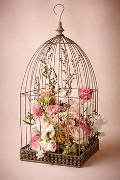 Beautiful birdcage