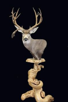 juniper floor pedestal for deer mounts
