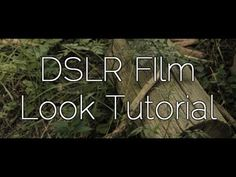 How to achieve a Film Look - DSLR film making Photography Cheat Sheets, Photography Lessons, Photography And Videography, Video Photography, Photography Tutorials, Amazing Photography, Digital Photography, Dslr Settings, Film Tips