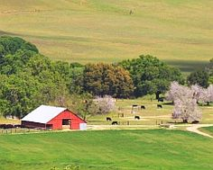 barn on cattle ranches - Google Search