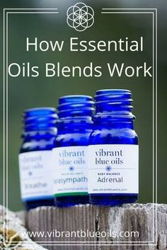 Essential oils are extremely powerful as single oils, but there is something about combining single oils into blends that both amplifies and enhances the healing power of the oils. It is almost like a good marriage or friendship—the synergy of the two energies combined significantly enhances both individuals.