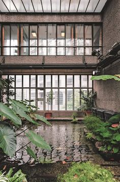 Majestic Conservatories and Cozy Private Potting Sheds Showcase the Universal Appeal of Glass Greenhouses Oxford Botanic Garden, Glasgow Botanic Gardens, Barbican Conservatory, What Is A Conservatory, History Of Glass, Tropical Greenhouses, Alpine House, Dome Greenhouse, Potting Sheds