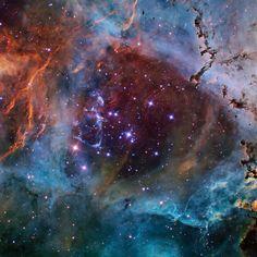 Rosette Nebula by Don Goldman (APOD March 11, 2014) | PlaneWave Instruments