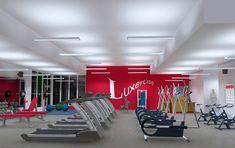 lighting gym - חיפוש ב-Google