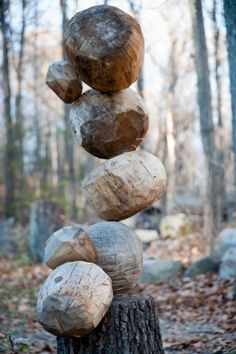 wood rock sculpture? by edith