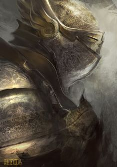Paladin by ~Director-16 on deviantART
