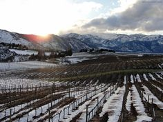 Wine Tasting Lake Chelan, Washington