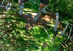 ◎ そんな傍若無人さを発揮したい大人のみなさんに朗報です(笑)。「フォレストアドベンチャー」は、自然の中で様々なアトラクション(といっても自分の手足を使って木に登ったり、橋を渡ったり、本格的なターザンごっこをするかなりアクティブなアトラクションなのですが)を体験できる自然共生型テーマパークが国内に展開されています。お一人でも、お子さまとでも、目一杯発散でき、秋らしい自然の恵みも享受でき、そして夕方ころには心地よく疲れていることでしょう。帰りの車の運転等のことは、この場合忘れましょうね。◎ 自然共生型アウトドアパーク フレスとアドベンチャー ☞ http://www.foret-aventure.jp