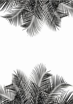 Plants wallpaper iphone palm trees 21 ideas for 2019 Plant Wallpaper, Wallpaper Backgrounds, Summer Backgrounds, Iphone Wallpapers, Textures Patterns, Print Patterns, Pattern Art, Motif Tropical, Design Art
