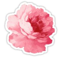 """Flower pink peony"" Stickers by Olga Chetverikova Stickers Kawaii, Laptop Stickers, Cute Stickers, Suitcase Stickers, Pink Peonies, Pink Flowers, Painted Flowers, Buy Peonies, Exotic Flowers"