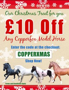 ?10 Off Any Copperfox Model Horse
