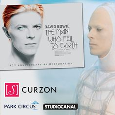 TMWFTE for #SaveCurzonSoho campaign - David Bowie Latest News