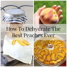 How To Dehydrate The