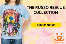 Dean Russo Rescue Collection -Purchase With A Purpose l www.themountain.com/purchase-with-a-purpose