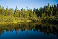 Tříjezerní slať - rašelinné jezírko, Šumava Czech Republic, River, Mountains, Nature, Outdoor, Outdoors, Naturaleza, Outdoor Games, Nature Illustration