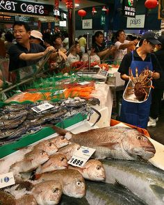I want to move to a place that has a fish market!!