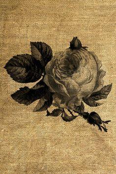 INSTANTANÉ Illustration Vintage Rose téléchargement et par room29