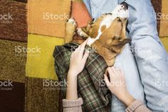 http://media.istockphoto.com/photos/relaxing-with-dog-picture-id622008952
