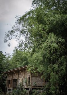Rainforest Wood & Bamboo used for a low-cost House by Enrique Mora Alvarado