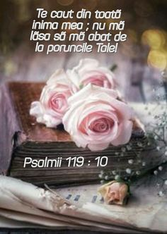 Blessed, God, Flowers, Bible, Dios, Allah, Royal Icing Flowers, Flower, Florals