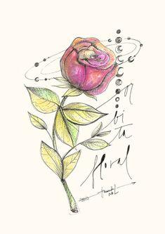 Rosa - órbita floral - Amanda Mol   Loja