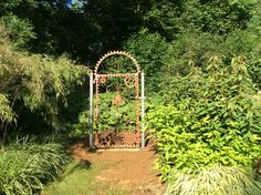 Garden Club, Arch, Fox, Outdoor Structures, Ideas, Bow, Arches, Foxes, Thoughts
