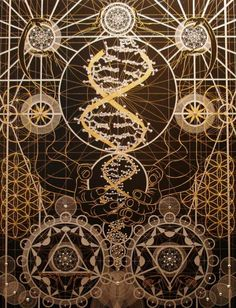 Inside the DNA helix.  Truely unraveling the mystery