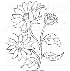 Free Printable Black Art | Clip Art of a Coloring Page of a Black Eyed Susan Flower Plant by ...
