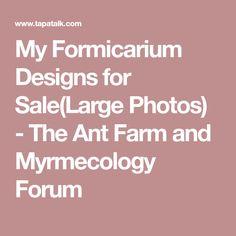 My Formicarium Designs for Sale(Large Photos) - The Ant Farm and Myrmecology Forum