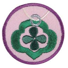 Girl scout leader 101 junior gardener badge what one leader did junior jeweler badge solutioingenieria Gallery